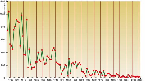 Curve of the French production of Truffle since 1900
