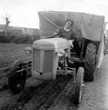 1960 : premiers essais de mycorhization
